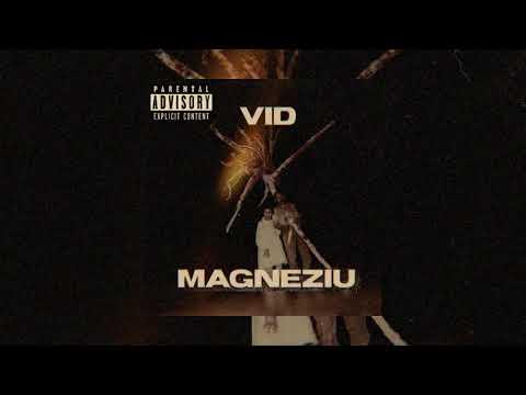 VID - Magneziu