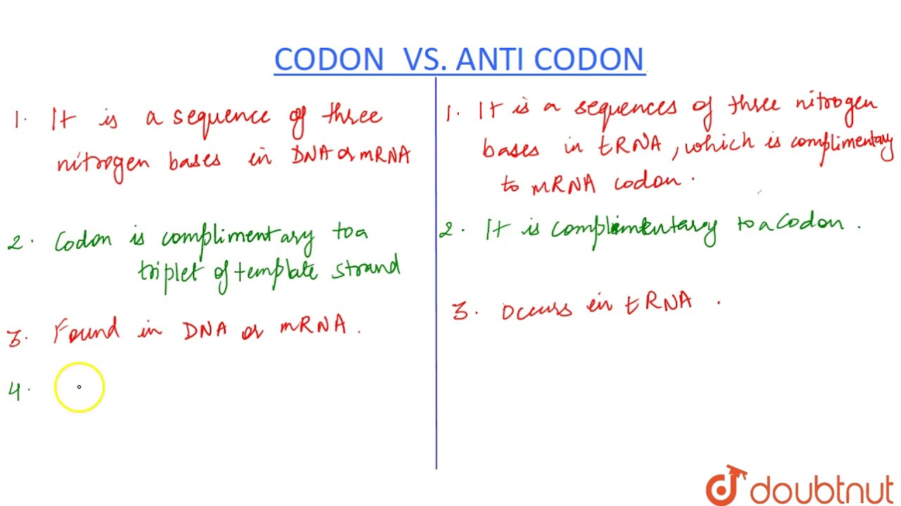 Difference Between Codon  U0026 Anticodon