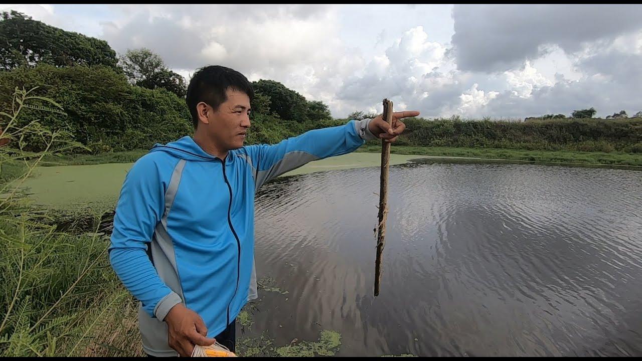 刀仔路过野塘发现有水花滚动,拿来鱼网撒一圈,拉上来后悔已晚了