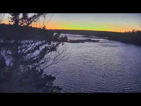 Audubon Osprey Nest Cam 03-17-2018 15:55:27 - 16:55:28