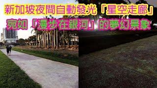 新加坡打造夜間自動發光的「星空走廊」,宛如「漫步在銀河」的夢幻景象讓各國網友狂讚!   Man Sir 生活台