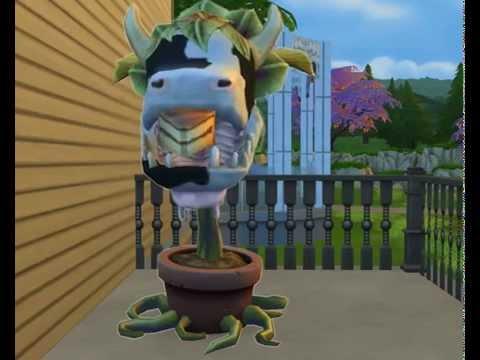 giant-frog-vore