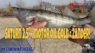 Рыбалка в Ростове-на-Дону, 29-я линия, понтонный мост. Ловим селедку