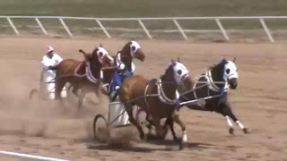 S & L RACING  VS.   HILLYARD STABLES