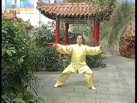 Chen style Tai Chi Laojia Erlu tutorial Chen Zhenglei 1/2