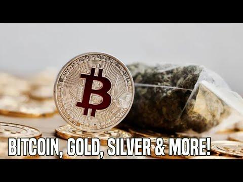 Macro Analysis (1/29/20) | Bitcoin, Gold, Cannabis & More!