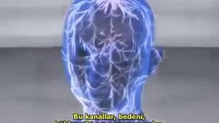 Evrensel enerji insan vücuduna bağlı olan ve insanı tamamen saran bir parçasıdır.