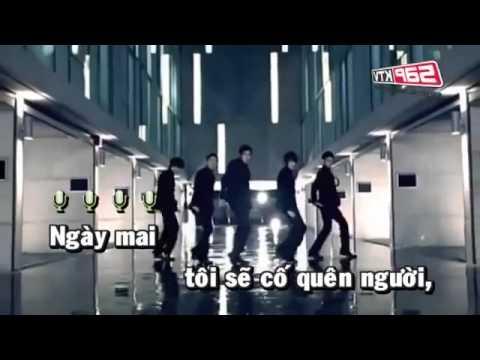 Lưu Chí Vỹ - Bạc Trắng Tình Đời Lyrics | Musixmatch