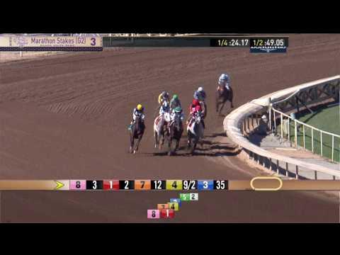 Marathon Stakes (Gr  II) - Friday, November 4 2016