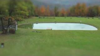 Birth of a Pond Time Lapse