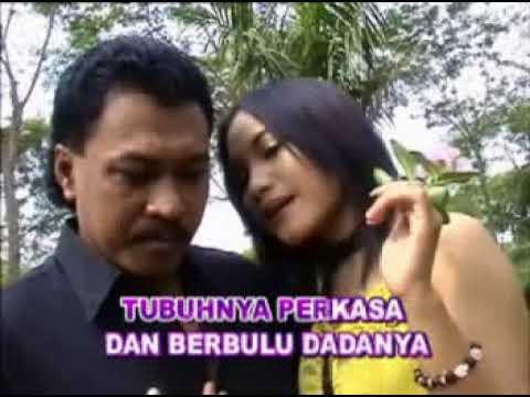 PALING SENANG -Karya Besar S. Achmadi / OM Awara (Karaoke)