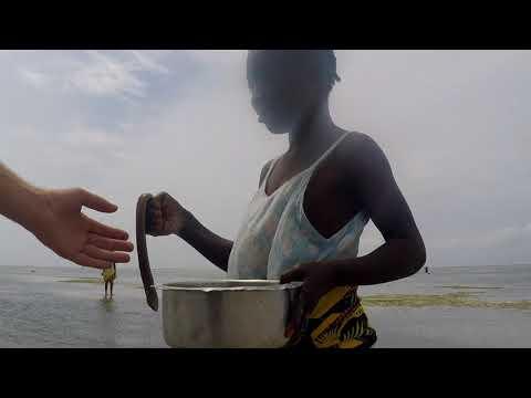 04. Tanzania - Zanzibar, Matemwe