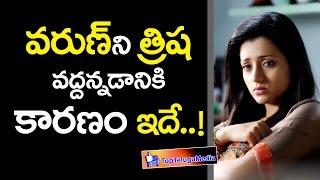 Trisha Krishnan Open Talk About Her Marriage Break up with varun - టాలీవుడ్ లేటెస్ట్ న్యూస్