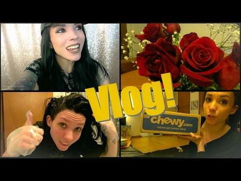 VLOG: February 8th-15th | Dog Haul, My Roots, & Valentine's Day!❤