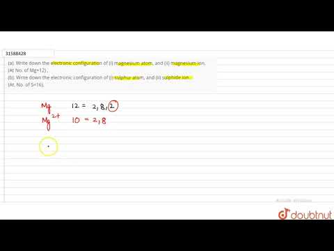 (a). Write Down The Electronic Configuration Of (i) Magnesium Atom, And (ii) Magnesium Ion