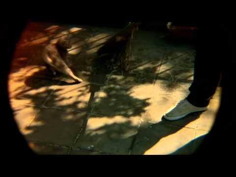 Клип Pete and The Pirates - United