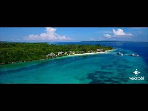 Wakatobi Island Dive Resort