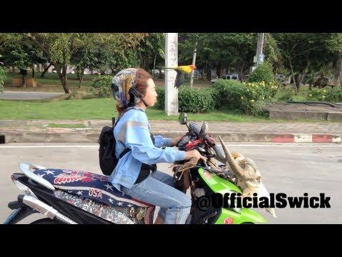 Bird Flies Alongside Outlaw Lady On Scooter - Weird Strange Epic - Mike Swick