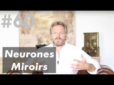 Full download les neurones miroirs for Neurones miroir