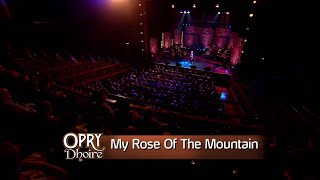 Big Tom | My Rose of the Mountain