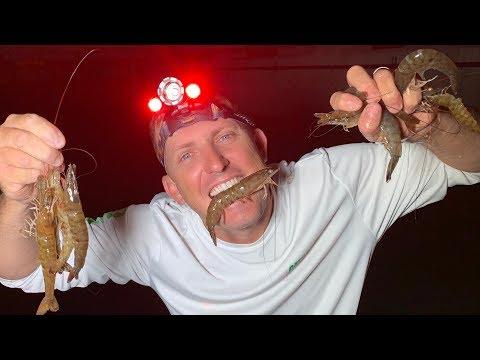 DINOSAUR SHRIMP {Catch Clean Cook} Garlic Shrimp On The Half Shell