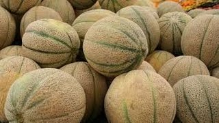 What does this 14 pound bag of melons mean for gamers?
