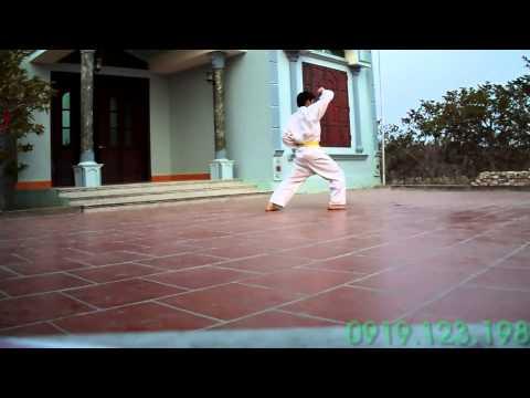 Học võ karate-do [Quang Lê]