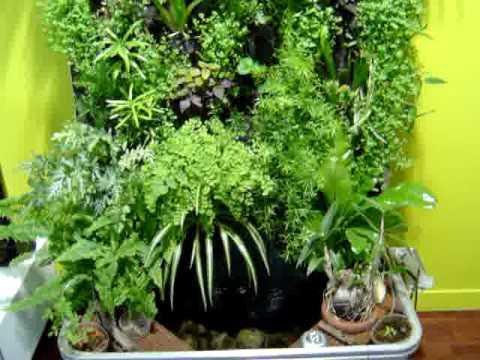 Mur v g tal int rieur vg tal3design dans c t jardin doovi - Tableau vegetal jardiland ...