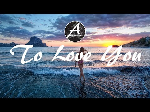 Vinil & Sterkøl - To Love You ft. Ellena Soule (w/Lyrics)