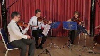 Hoppipolla - Erskine String Quartet (Cover)