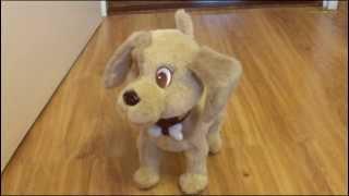 Piesek Bobby - zabawka interaktywna od Epee