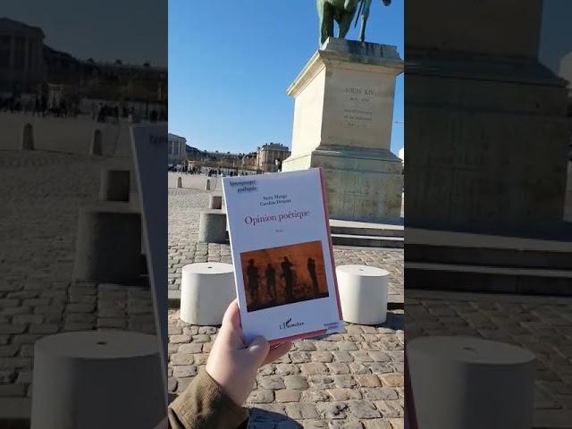 Opinion Poetique Dans La Cité