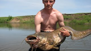 Рыбалка сом весом 20 кг на донку взял на лягушку