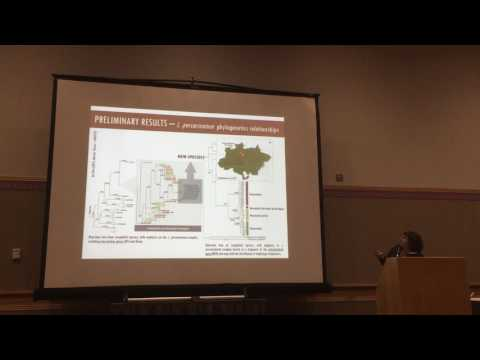 Brunes: Unveiling geographical, ecological, & evolutionary relationships