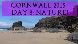 Cornwall 2015, Day 08 - Staying At Camp | Tania Michele