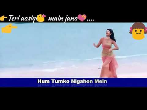 Hum Tumko Nigahon Mein|whatsapp status video|Hindi Movies |Udit Narayan |garv|romantic status|female