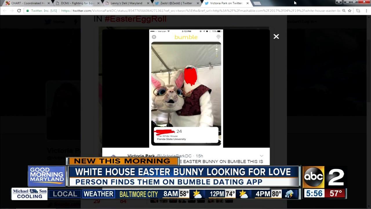 bunny dating app