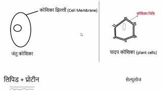 Gk Tricks Hindi    Science 4#    SSC MPPSC UPSC Railway Exam