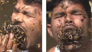 Man Eats Bees Alive (this is why bees go extinct)