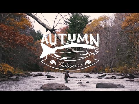 Autumn Tailwaters - Fall Fishing & Wild Trout in the Catskills