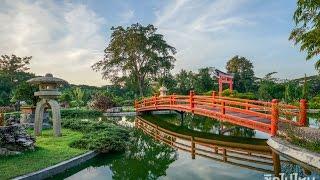 Suanphung Bonsai Village ที่พักสไตล์สวนบอนไซแห่งแรกในเมืองไทย แลนด์มาร์คใหม่ในสวนผึ้ง