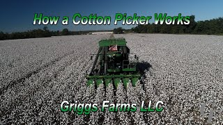 How A Cotton Picker Works (4K)