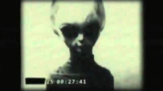 Wikileaks Video Of Roswell Grey Alien