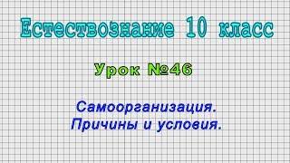 Естествознание 10 класс (Урок№46 - Самоорганизация. Причины и условия.)