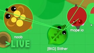 Mope.io Live Stream | MopeX Mods/Hack, Testing the Waters