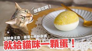直接給貓咪一顆蛋-短褲暴怒-貓主食食譜-好味貓鮮食廚房ep174