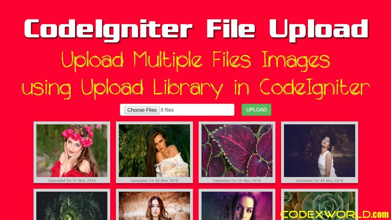 Upload Multiple Files and Images in CodeIgniter - CodexWorld