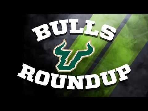 Bulls Roundup #1