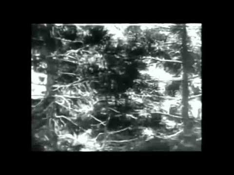 Black Film 1900-1960