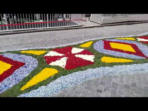 VILA DO CONDE, Flower Carpet's 2017 - Ep. 9